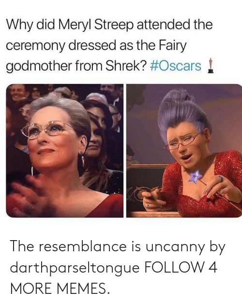 Meryl Streep: Why did Meryl Streep attended the  ceremony dressed as the Fairy  godmother from Shrek? The resemblance is uncanny by darthparseltongue FOLLOW 4 MORE MEMES.
