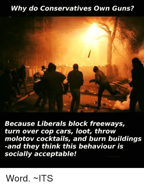 Cocktails: Why do Conservatives Own Guns?  Because Liberals block freeways,  turn over cop cars, loot, throw  molotov cocktails, and burn buildings  and they think this behaviour is  socially acceptable! Word.                   ~ITS