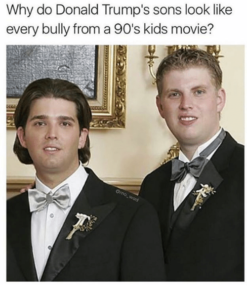 Memes, Kids, and Movie: Why do Donald Trump's sons look like  every bully from a 90's kids movie?