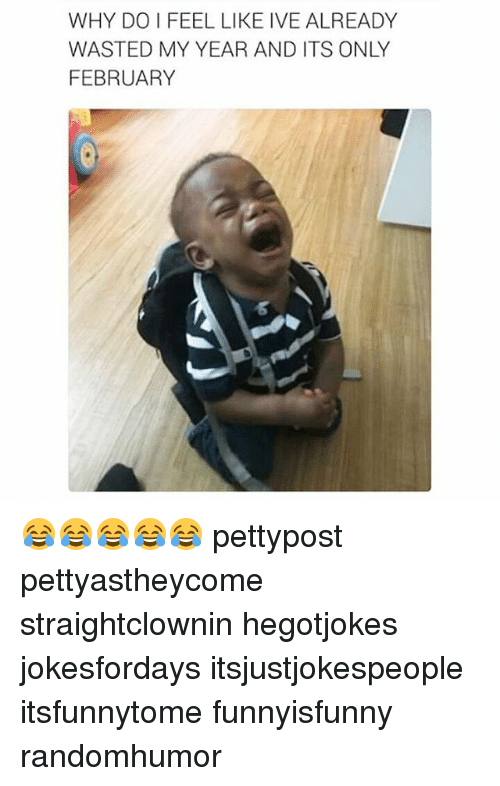 Memes, 🤖, and Why: WHY DO FEEL LIKE IVE ALREADY  WASTED MY YEAR AND ITS ONLY  FEBRUARY 😂😂😂😂😂 pettypost pettyastheycome straightclownin hegotjokes jokesfordays itsjustjokespeople itsfunnytome funnyisfunny randomhumor