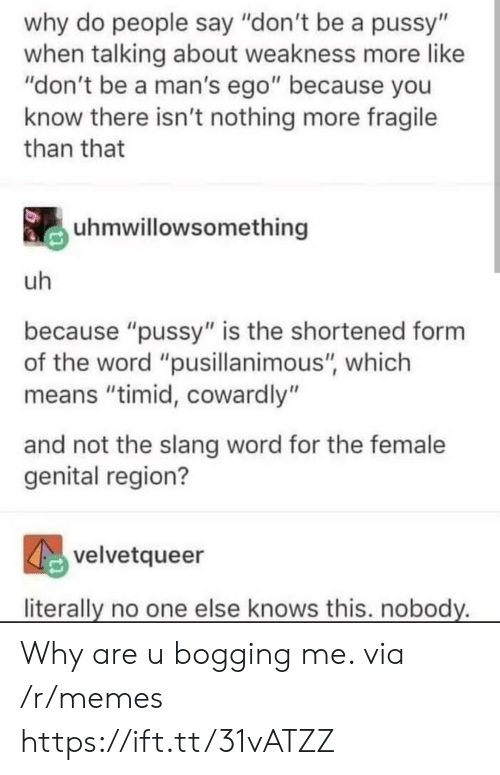 """why are u: why do people say """"don't be a pussy""""  when talking about weakness more like  """"don't be a man's ego"""" because you  know there isn't nothing more fragile  than that  uhmwillowsomething  uh  because """"pussy"""" is the shortened form  the word """"pusillanimous"""", which  means """"timid, cowardly""""  and not the slang word for the female  genital region?  velvetqueer  literally no one else knows this. nobody. Why are u bogging me. via /r/memes https://ift.tt/31vATZZ"""