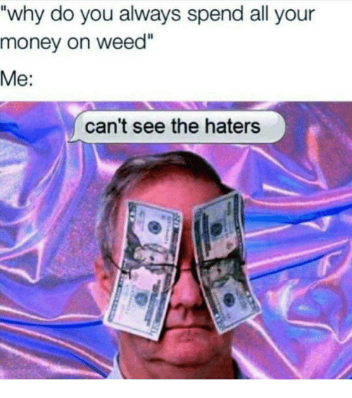 "Cant See The Haters: ""why do you always spend all your  money on weed""  Me:  can't see the haters"