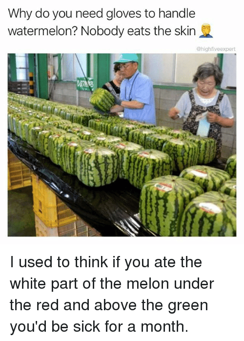 Memes, White, and Sick: Why do you need gloves to handle  watermelon? Nobody eats the skin  @highfiveexpert I used to think if you ate the white part of the melon under the red and above the green you'd be sick for a month.