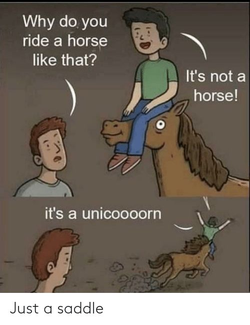 ride: Why do you  ride a horse  like that?  It's not a  horse!  it's a unicoooorn Just a saddle