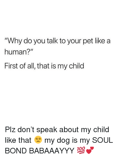 "Memes, All That, and 🤖: ""Why do you talk to your pet like a  human?""  First of all, that is my child Plz don't speak about my child like that 😒 my dog is my SOUL BOND BABAAAYYY 💯💕"