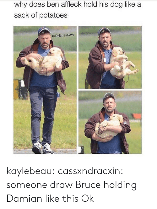 ben: why does ben affleck hold his dog like a  sack of potatoes  @DrSmashlove kaylebeau:  cassxndracxin:  someone draw Bruce holding Damian like this   Ok