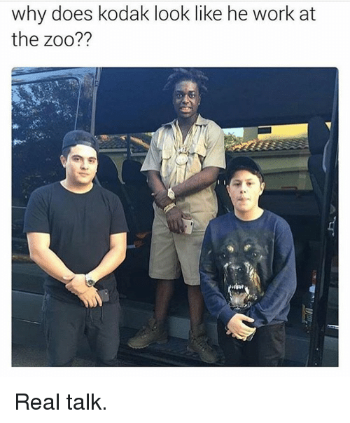 Why Doe: why does kodak look like he work at  the zoo?? Real talk.