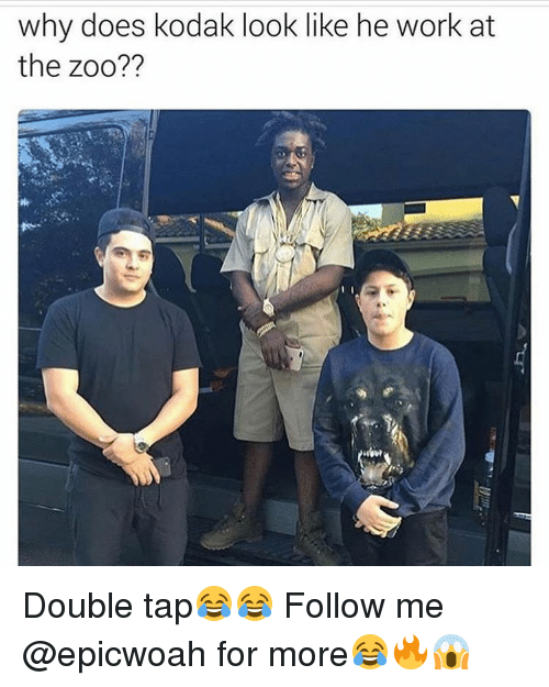 Why Doe: why does kodak look like he work at  the zoo?? Double tap😂😂 Follow me @epicwoah for more😂🔥😱