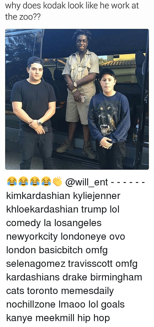 Why Doe: why does kodak look like he work at  the zoo?? 😂😂😂😂👏 @will_ent - - - - - - kimkardashian kyliejenner khloekardashian trump lol comedy la losangeles newyorkcity londoneye ovo london basicbitch omfg selenagomez travisscott omfg kardashians drake birmingham cats toronto memesdaily nochillzone lmaoo lol goals kanye meekmill hip hop