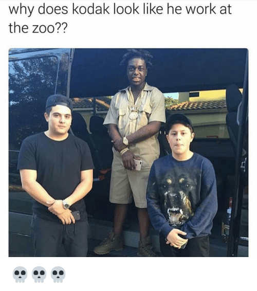 Why Doe: why does kodak look like he work at  the zoo?? 💀💀💀