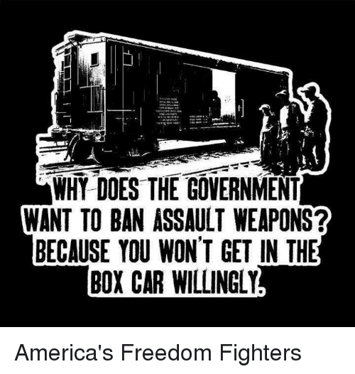 America Freedom: WHY DOES THE GOVERNMENT  WANT TO BAN ASSAULT WEAPONS?  BECAUSE YOU WON'T GET IN THE  BOXCAR WILLINGLY America's Freedom Fighters