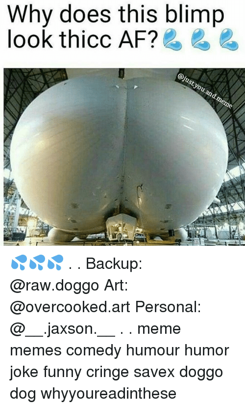 Dank Memes, Blimp, and Raw: Why does this blimp  look thicc AF?  just you  and meme 💦💦💦 . . Backup: @raw.doggo Art: @overcooked.art Personal: @__.jaxson.__ . . meme memes comedy humour humor joke funny cringe savex doggo dog whyyoureadinthese