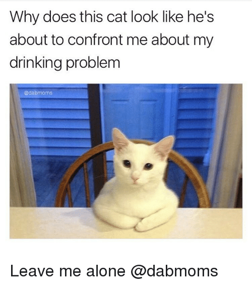 Funny Memes About Drinking Alone : Best memes about leave me alone