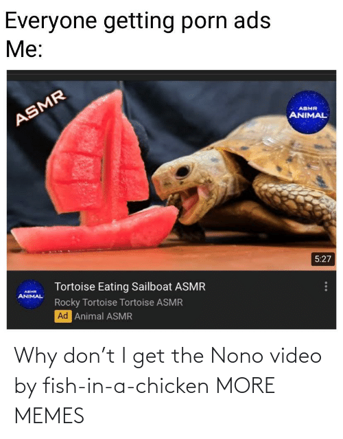 Fish: Why don't I get the Nono video by fish-in-a-chicken MORE MEMES