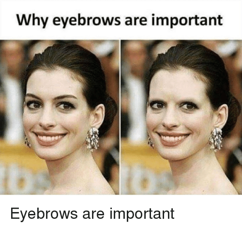 Funny, Why, and Eyebrows: Why eyebrows are important Eyebrows are important