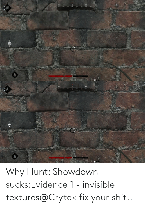 Fix: Why Hunt: Showdown sucks:Evidence 1 - invisible textures@Crytek fix your shit..