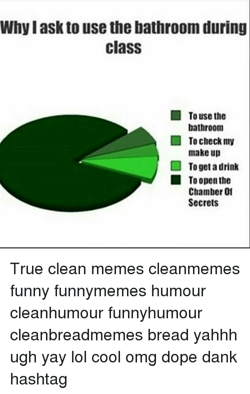 Dank, Dope, and Funny: Why I ask to use the bathroom during  class  To use the  bathroom  To check my  make up  To get a drink  To open the  Chamber 01  Secrets True clean memes cleanmemes funny funnymemes humour cleanhumour funnyhumour cleanbreadmemes bread yahhh ugh yay lol cool omg dope dank hashtag