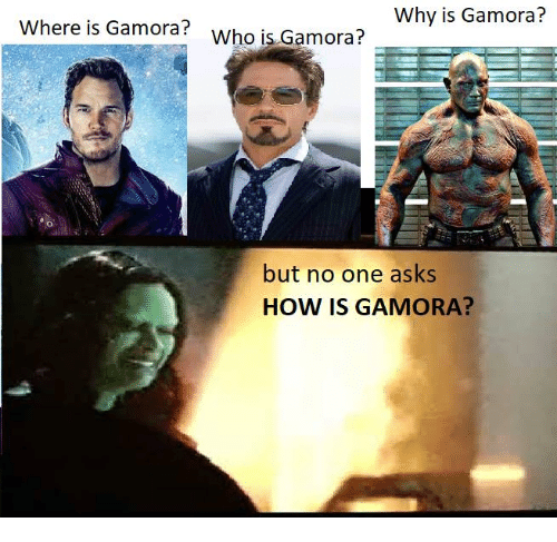 Memes, Asks, and 🤖: Why is Gamora?  Where is Gamora?  Who is Gamora?  but no one asks  HOW IS GAMORA?