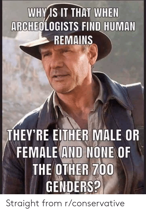 Conservative, Human, and Why: WHY IS IT THAT WHEN  ARCHEOLOGISTS FIND HUMAN  REMAINS  THEY'RE EITHER MALE OR  FEMALE AND NONE OF  THE OTHER 700  GENDERS? Straight from r/conservative