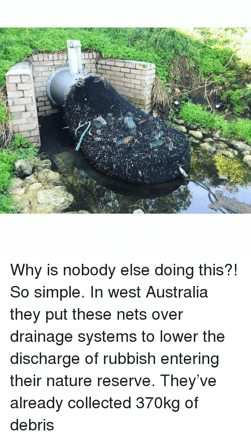 rubbish: Why is nobody else doing this?! So simple. In west Australia they put these nets over drainage systems to lower the discharge of rubbish entering their nature reserve. They've already collected 370kg of debris