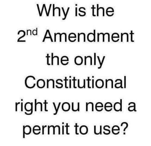 Constitutional: Why is the  2nd Amendment  the only  Constitutional  right you need a  permit to use?