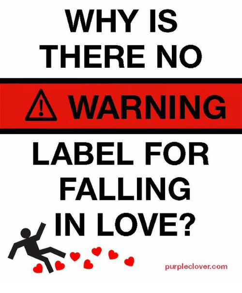 Why Is There No A Warning Label For Falling In Love Purple Clover