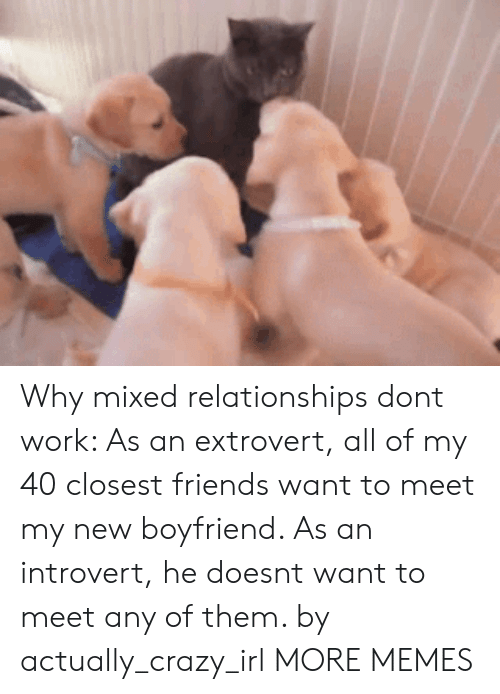 an introvert: Why mixed relationships dont work: As an extrovert, all of my 40 closest friends want to meet my new boyfriend. As an introvert, he doesnt want to meet any of them. by actually_crazy_irl MORE MEMES