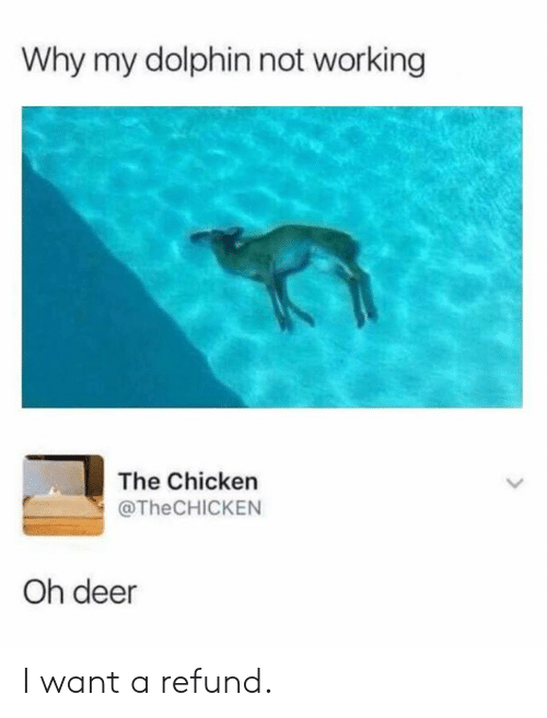 Refund: Why my dolphin not working  The Chicken  @TheCHICKEN  Oh deer I want a refund.