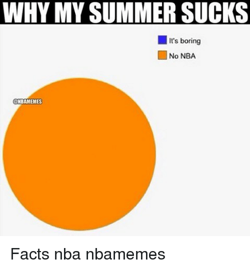 Basketball, Bored, and Facts: WHY MY SUMMER SUCKS  It's boring  No NBA  NBAMEMES Facts nba nbamemes