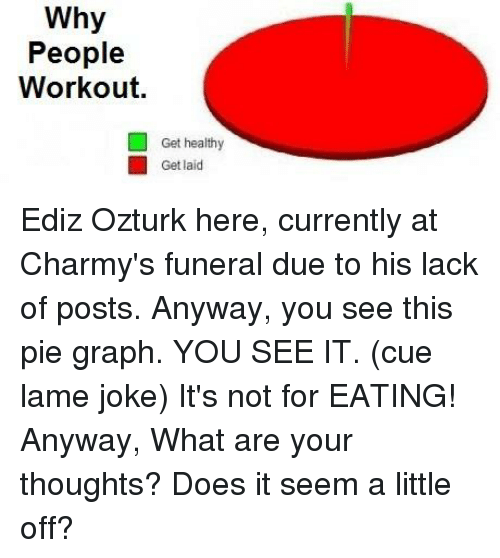 lame jokes: Why  People  Workout.  Get healthy  Get laid Ediz Ozturk here, currently at Charmy's funeral due to his lack of posts.  Anyway, you see this pie graph. YOU SEE IT. (cue lame joke) It's not for EATING!  Anyway, What are your thoughts? Does it seem a little off?