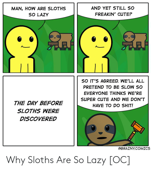 Lazy: Why Sloths Are So Lazy [OC]