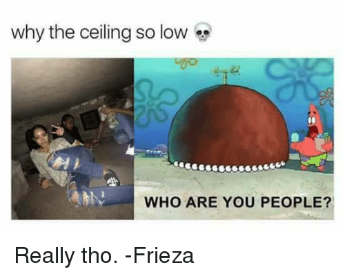 Funny: why the ceiling so low  WHO ARE YOU PEOPLE? Really tho.   -Frieza