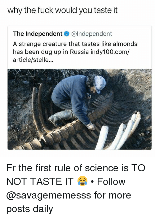 Memes, Fuck, and Russia: why the fuck would you taste it  The Independent@Independent  A strange creature that tastes like almonds  has been dug up in Russia indy100.com/  article/stelle... Fr the first rule of science is TO NOT TASTE IT 😂 • Follow @savagememesss for more posts daily