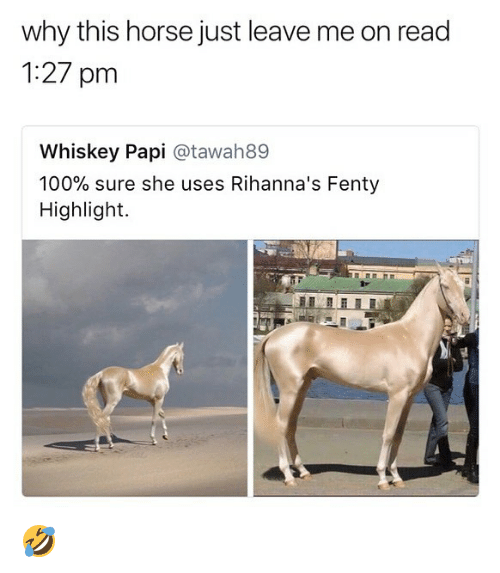 Anaconda, Memes, and Horse: why this horse just leave me on read  1:27 pm  Whiskey Papi @tawah89  100% sure she uses Rihanna's Fenty  Highlight. 🤣