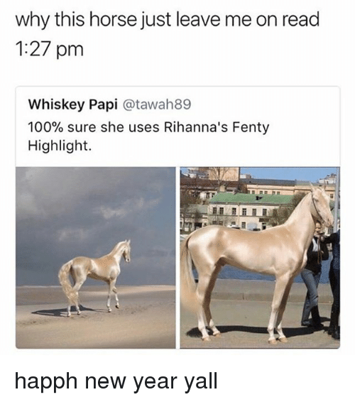 Anaconda, Memes, and New Year's: why this horse just leave me on read  1:27 pm  Whiskey Papi @tawah89  100% sure she uses Rihanna's Fenty  Highlight. happh new year yall
