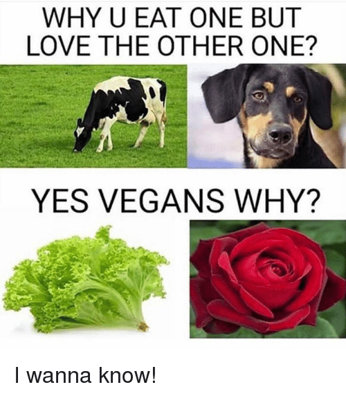 Dank, Love, and Wanna Know: WHY U EAT ONE BUT  LOVE THE OTHER ONE?  YES VEGANS WHY? I wanna know!