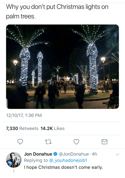 Why You Don T Put Christmas Lights On Palm Trees 121017
