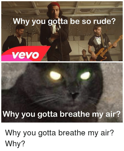 Memes, Rude, and Vevo: Why you gotta be so rude?  VeVO  Why you gotta breathe my air? Why you gotta breathe my air? Why?