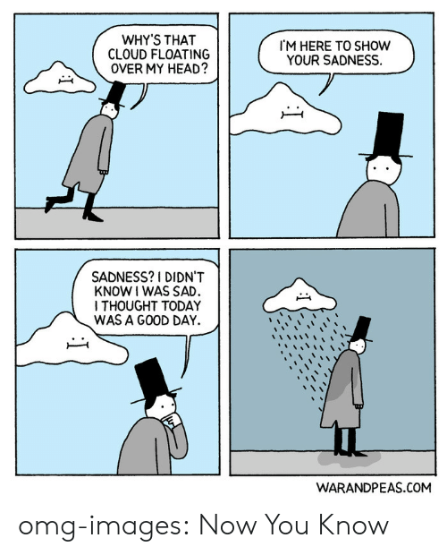 today was a good day: WHY'S THAT  CLOUD FLOATING  OVER MY HEAD?  M HERE TO SHOW  YOUR SADNESS.  SADNESS? I DIDN'T  KNOW I WAS SAD  ITHOUGHT TODAY  WAS A GOOD DAY.  WARANDPEAS.COM omg-images:  Now You Know