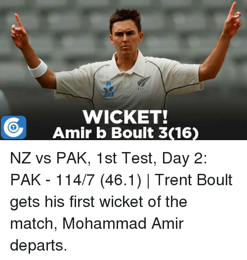 nz vs pak - photo #26