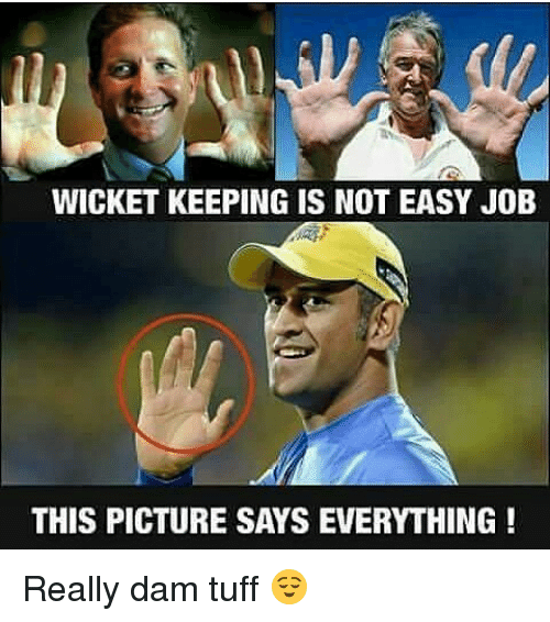Memes, Jobs, and 🤖: WICKET KEEPING IS NOT EASY JOB  THIS PICTURE SAYS EVERYTHING Really dam tuff 😌