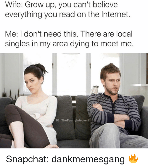 Internet, Memes, and Snapchat: Wife: Grow up, you can't believe  everything you read on the Internet.  Me: I don't need this. There are local  singles in my area dying to meet me.  IG: The Funnylntrovert Snapchat: dankmemesgang 🔥
