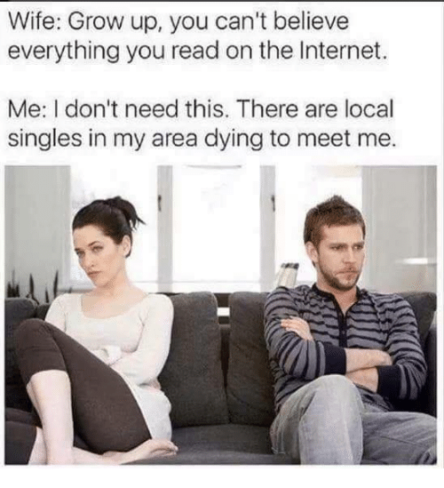 Dank, Internet, and Wife: Wife: Grow up, you can't believe  everything you read on the Internet.  Me: I don't need this. There are local  singles in my area dying to meet me.