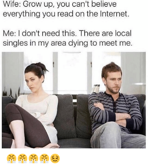 Internet, Wife, and Dank Memes: Wife: Grow up, you can't believe  everything you read on the Internet.  Me: I don't need this. There are local  singles in my area dying to meet me. 😤😤😤😤😖