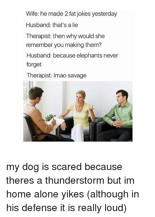 Aloner: Wife: he made 2 fat jokes yesterday  Husband: that's a lie  Therapist: then why would she  remember you making them?  Husband: because elephants never  forget  Therapist: Imao savage my dog is scared because theres a thunderstorm but im home alone yikes (although in his defense it is really loud)