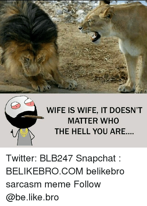Memes, 🤖, and Bro: WIFE IS WIFE, IT DOESN'T  MATTER WHO  THE HELL YOU ARE.... Twitter: BLB247 Snapchat : BELIKEBRO.COM belikebro sarcasm meme Follow @be.like.bro