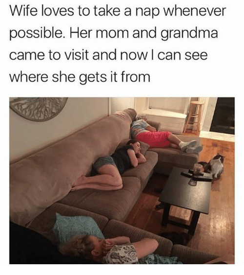 Dank, Grandma, and Wife: Wife loves to take a nap whenever  possible. Her mom and grandma  came to visit and now I can see  where she gets it from