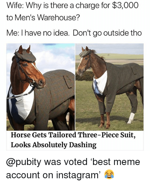 mens warehouse: Wife: Why is there a charge for $3,000  to Men's Warehouse?  Me: I have no idea. Don't go outside thoo  Horse Gets Tailored Three-Piece Suit  Looks Absolutely Dashing @pubity was voted 'best meme account on instagram' 😂
