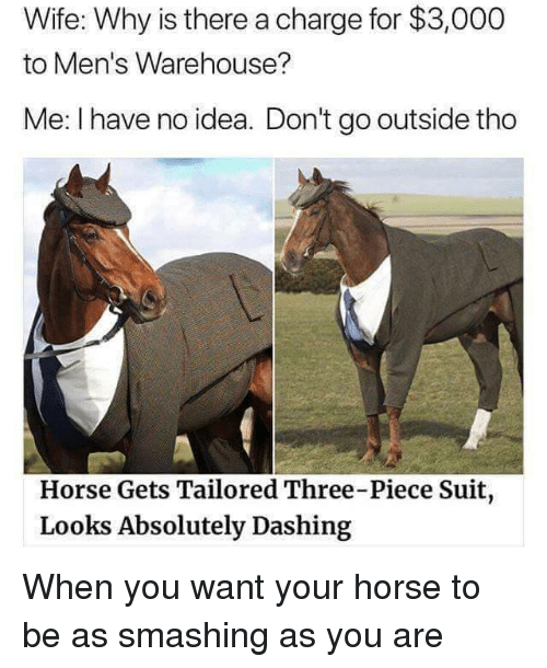Horse, Wife, and Idea: Wife: Why is there a charge for $3,000  to Men's Warehouse?  Me: I have no idea. Don't go outside tho  Horse Gets Tailored Three-Piece Suit  Looks Absolutely Dashing When you want your horse to be as smashing as you are