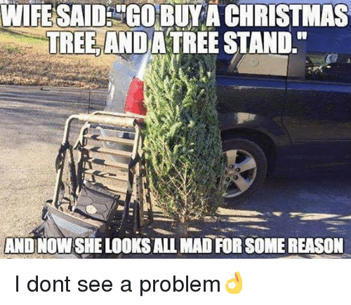 "Christmas, Memes, and Christmas Tree: WIFESAIDGOBUYA CHRISTMAS  TREE ANDATREE STAND.""  AND NOW SHE LOOKS ALL MAD FOR SOME REASON I dont see a problem👌"